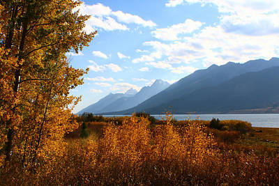 Photograph - Framed By Autumn by Jon Emery