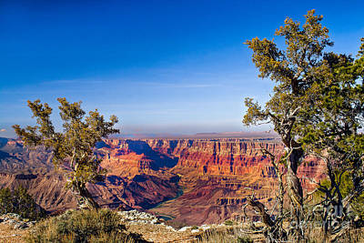 Photograph - Framed Grand Caynon by Robert Bales