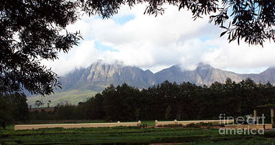 Abstract Male Faces - Framed Mountain by Marietjie Du Toit