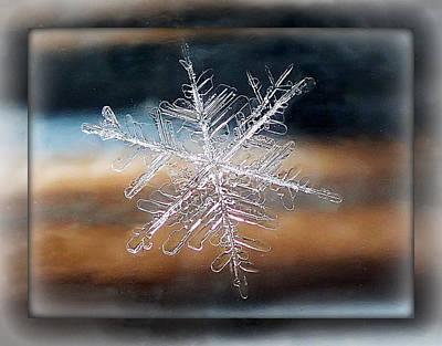 Framed Snowflake Art Print