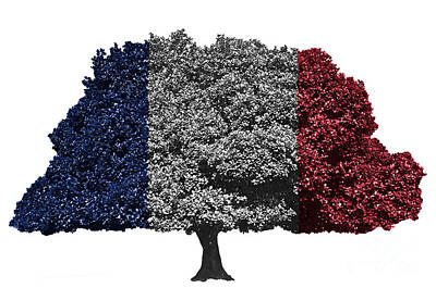 Flag Digital Art - France Flag Tree by Image World