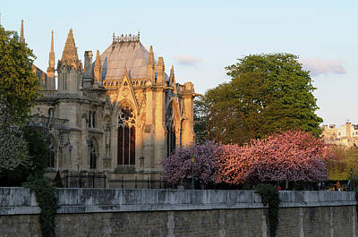 Ile De La Cite Photograph - France, Paris Notre Dame Cathedral by Kevin Oke