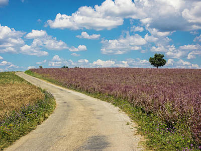 Backroad Photograph - France, Provence, Country Backroad by Terry Eggers