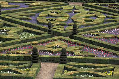 Local Views Photograph - France Villandry by Anonymous