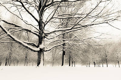 Photograph - Francis Park In Snow by Scott Rackers