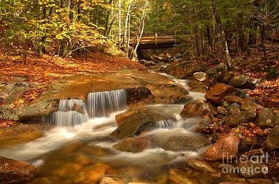 Photograph - Franconia Notch Cascades by Adam Jewell
