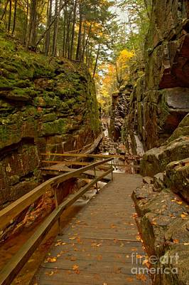 Photograph - Franconia Notch Flume Gorge Boardwalk by Adam Jewell