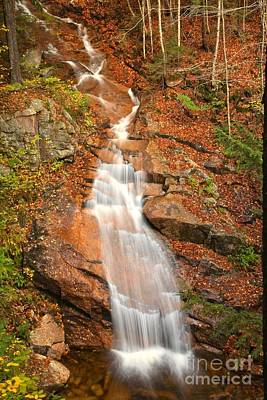 Photograph - Franconia Notch Liberty Cascades by Adam Jewell
