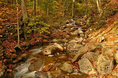 Photograph - Franconia Notch Stream Landscape by Adam Jewell