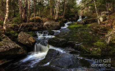 Photograph - Franey Falls by Nancy Dempsey