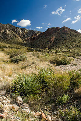 Photograph - Franklin Mountains Landscape 3 by Allen Sheffield