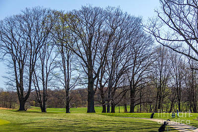 Photograph - Franklin Park View by Susan Cole Kelly