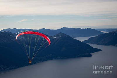 Photograph - Free-flying by Maurizio Bacciarini