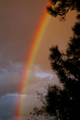 Photograph - Free Rainbow 2 by Ben Upham III