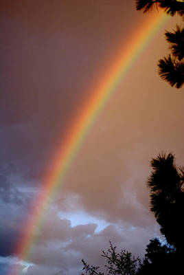 Photograph - Free Rainbow  by Ben Upham III