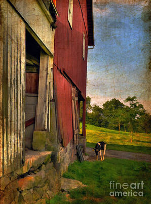 Agriculture Digital Art - Free Range by Lois Bryan