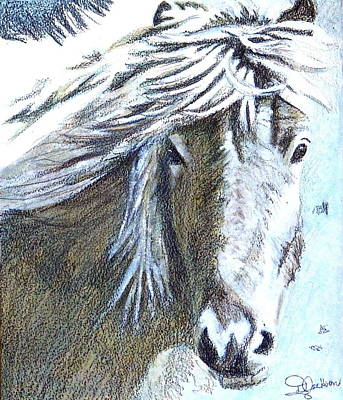 Painting - Free Spirit by Dale Jackson