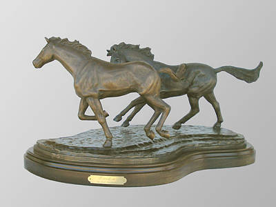 Sculpture - Freedom by Hugh Blanding