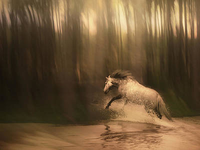 Horses Digital Art - Freedom Of The Forest by Jennifer Woodward