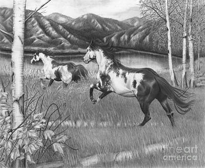 Drawing - Freedom Run by Barb Schacher
