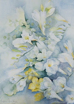 Still Life Drawing - Freesia Eldus, Giant White by Karen Armitage