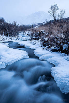 Photograph - Freezing Over by Tim Newton