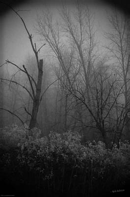 Photograph - Freezing Rogue Valley Fog At Night by Mick Anderson