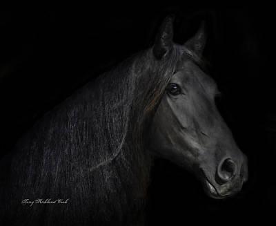 Friesian Horses Photograph - Friesian Mare  Brechtsje by Terry Kirkland Cook
