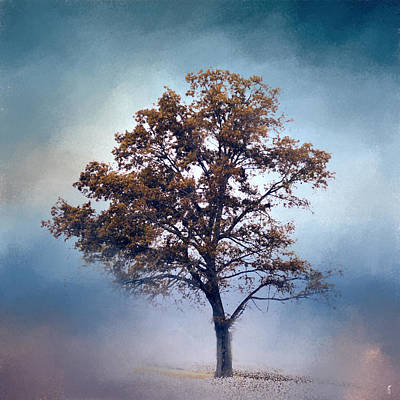Photograph - French Blue Cotton Field Tree - Landscape  by Jai Johnson