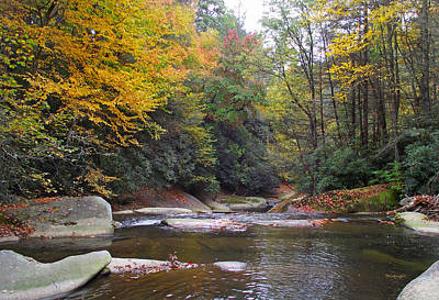 Photograph - French Broad River In Fall by Duane McCullough