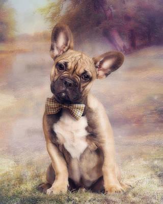 French Bulldog Art Print by Cindy Grundsten
