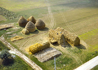 Photograph - French Haystacks by Chuck Staley