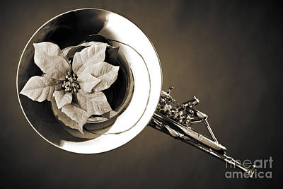 French Horn Photograph - French Horn And Flower Photograph In Sepia 3434.01 by M K  Miller