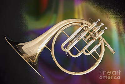 Photograph - French Horn Antique Classic In A Color Print 3210.02 by M K Miller