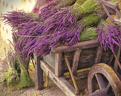 Photograph - French Lavender Cart by Phyllis Peterson