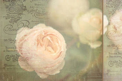 Floral Composition Photograph - French Nostalgic Roses by Jenny Rainbow