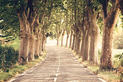 Landscape Photograph - French Road by Matteo Colombo