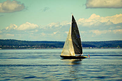 Frenzy Photograph - Frenzy Sails by Ronda Broatch