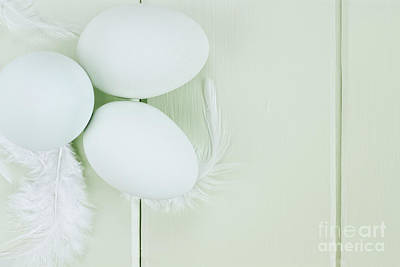 Fresh Ameraucana Eggs And Feathers Art Print by Stephanie Frey