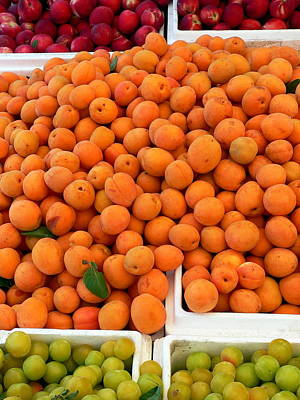 Photograph - Fresh Apricots And Plums by Jeff Lowe