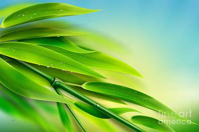 Abstract Digital Mixed Media - Fresh Bamboo by Bedros Awak