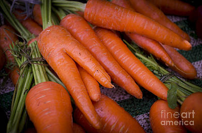 Photograph - Fresh Carrots On A Street Fair In Brazil by Ricardo Lisboa