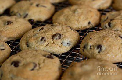 Photograph - Fresh Chocolate Chip Cookies by Cheryl Baxter