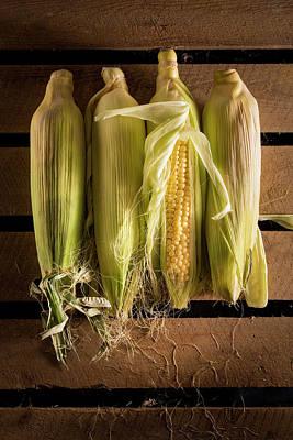 Fresh Corn On The Cob Print by Aberration Films Ltd