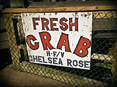 Photograph - Fresh Crab by Absinthe Art By Michelle LeAnn Scott