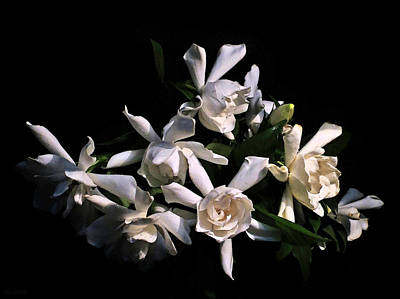 Photograph - Fresh Cut Gardenia Bouquet by Deborah Smith