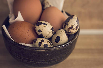 Photograph - Fresh Eggs by Heather Applegate