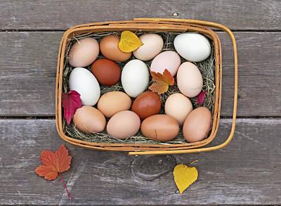 Glenda Photograph - Fresh Eggs In A Basket On An Old Porch by Glenda Christina