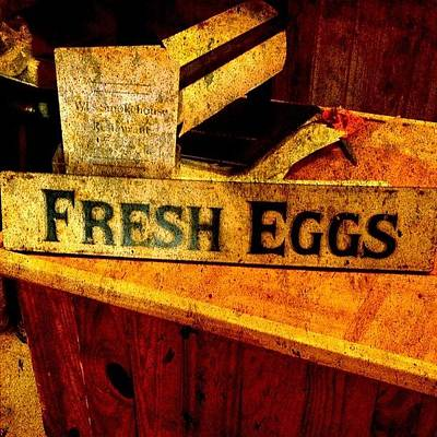 Texture Wall Art - Photograph - Fresh Eggs by Scott Pellegrin