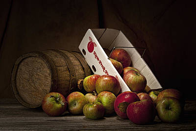 Fresh Photograph - Fresh From The Orchard I by Tom Mc Nemar